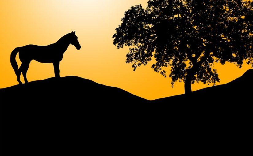 Gastfolge: Zwei Helden, viele Welten – My little Pony: Tales of Equestria