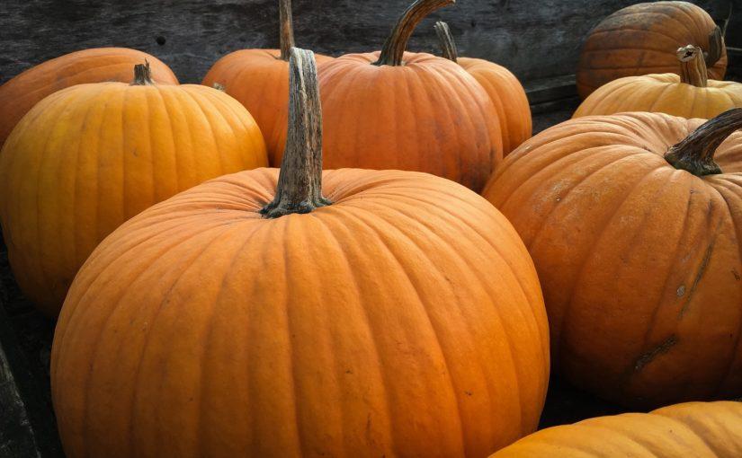 Halloween 2020 – Die goßen Ängste eines kleinen Podcasters